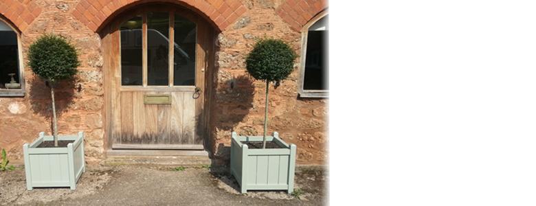 Planters Header Photo