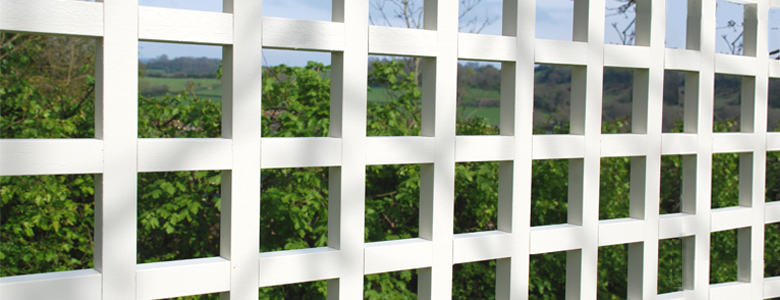 Square Trellis Header Photo