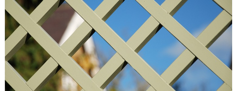 Trellis Header Photo